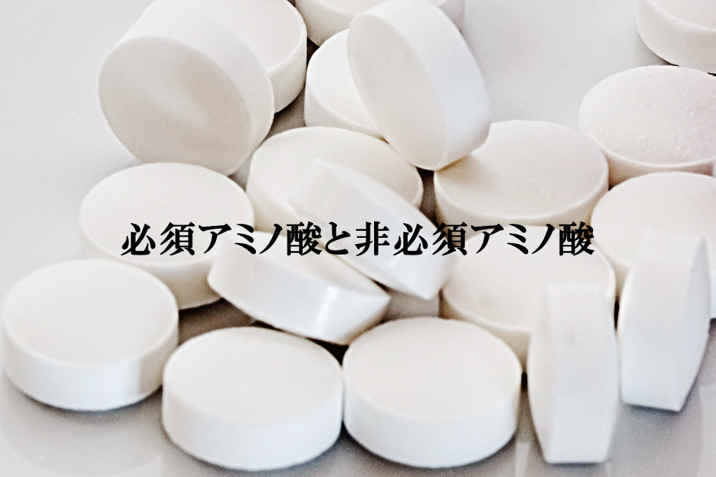 パーフェクトビルドEAAの必須アミノ酸と非必須アミノ酸